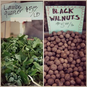 lambs quarter black walnuts