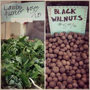 lambs quarter black walnuts