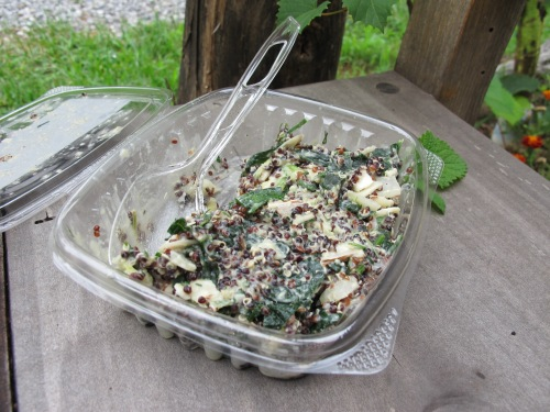 I also bought this super-yummy kale & quinoa salad.
