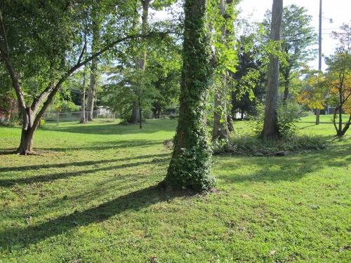 ..more lawn...
