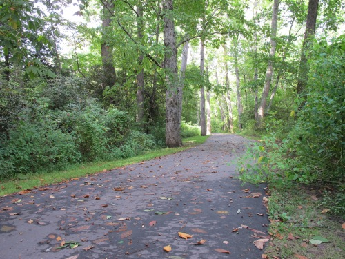 ..last pic of the Greenway, I only waked in a bit, then turned around, just to show you..