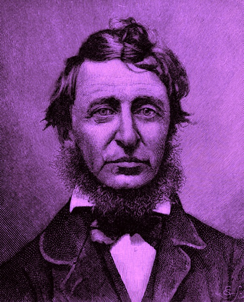 Henry David Thoreau portrait
